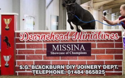 Miniature Maverick is a winner with easibed!