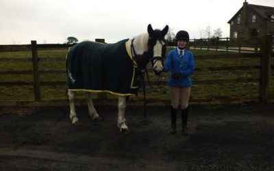 New easibed rug for competition winner!