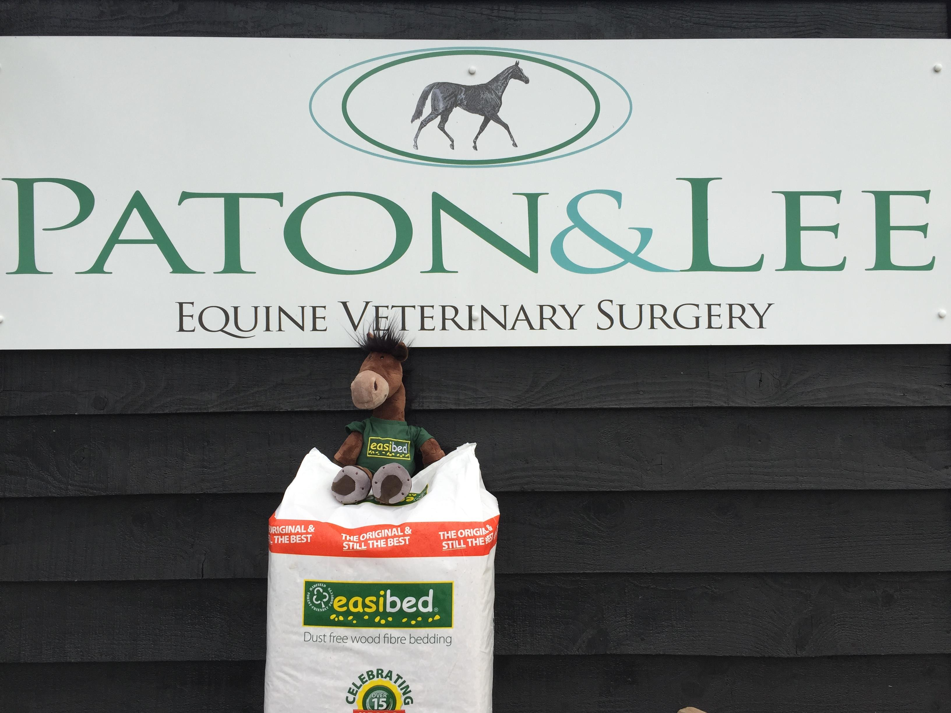 easibed dust free bedding for horses