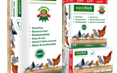 easichick Christmas competition